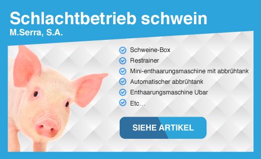 Schlachtbetrieb schwein