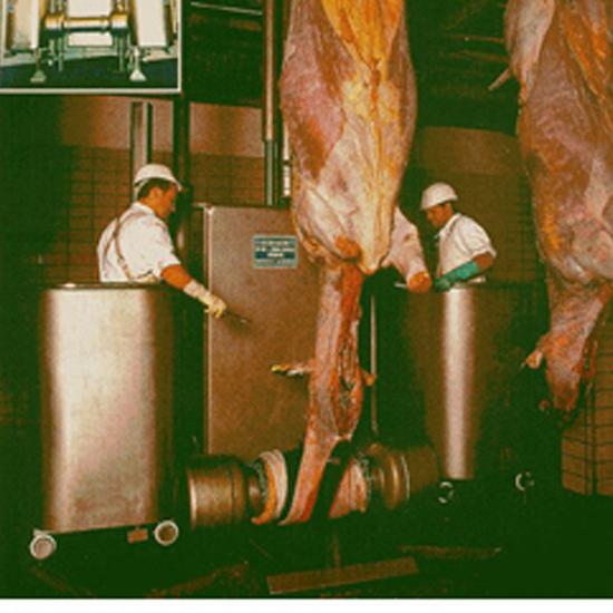 Escorxadora de bestiar vaquí DHBI